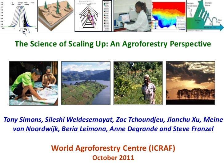 Scaling up icraf