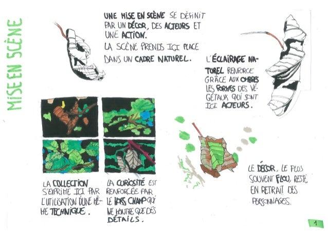 Végétaux : analyse + recherches
