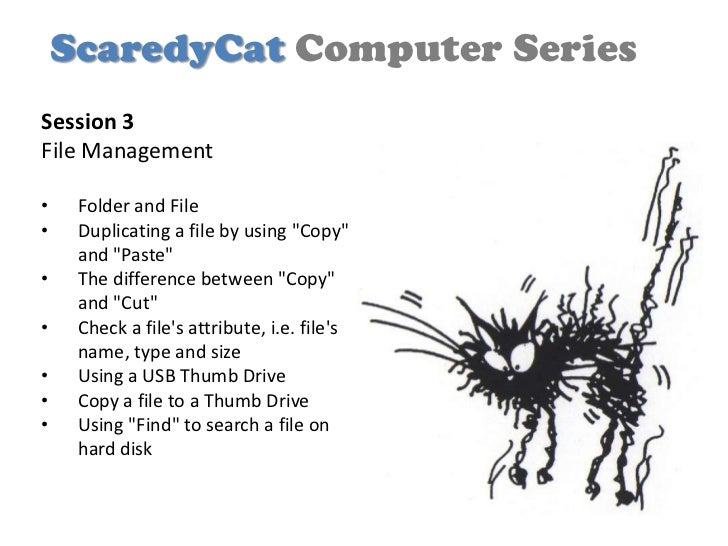 """ScaredyCat Computer SeriesSession 3File Management•    Folder and File•    Duplicating a file by using """"Copy""""     and """"Pas..."""