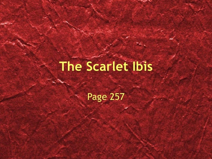 quotes for the scarlet ibis The scarlet ibis is the story of a boy born with a large head, small body and weak heart over the course of the story, the boy overcomes many of the obstacles in his life with the help of his older brother.