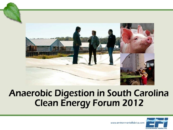 Biogas Project Development in SC 2012.