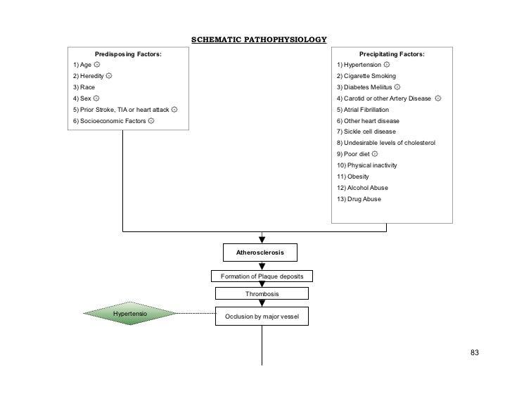 SCHEMATIC PATHOPHYSIOLOGY        Predisposing Factors:                                                          Precipitat...