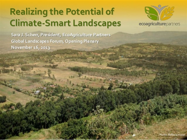 Realizing the Potential of Climate-Smart Landscapes Sara J. Scherr, President, EcoAgriculture Partners Global Landscapes F...