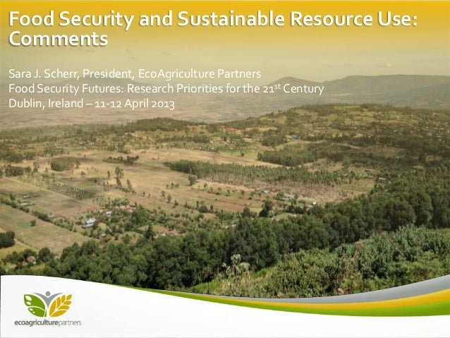 Food Security and Sustainable Resource Use:CommentsSara J. Scherr, President, EcoAgriculture PartnersFood Security Futures...