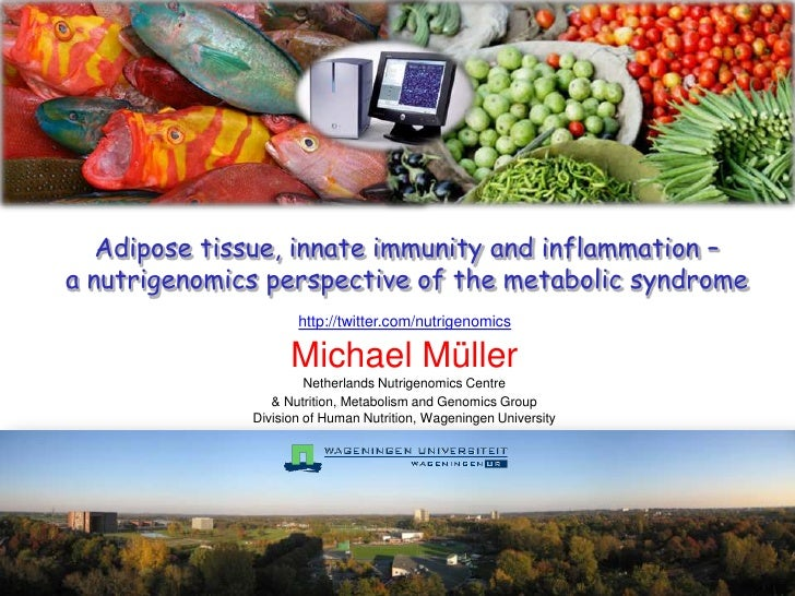 Adipose tissue innate immunity & inflammation - a nutrigenomics perspective of the metabolic syndrome