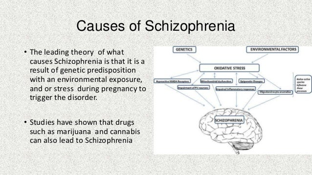 history and causes of schizophrenia Schizophrenia   schizophrenia treatment childhood schizophrenia   history of schizophrenia   schizophrenia sources causes scientists have not yet pinpointed a single cause of schizophrenia but the illness seems to be determined mostly by the chemical and physical defects of the brain which result from environment and.