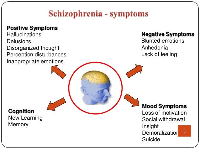 history of schizophenia and its treatment essay