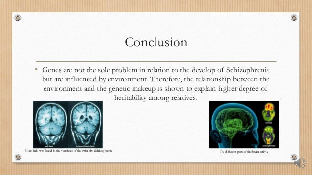 schizophrenia research paper conclusion