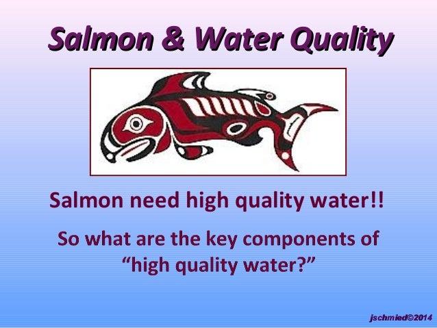 Salmon & Water QualitySalmon & Water Quality Salmon need high quality water!! jschmied©2014jschmied©2014