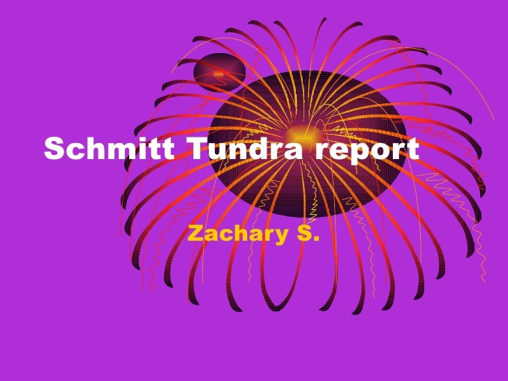 Schmitt Tundra report Zachary S.