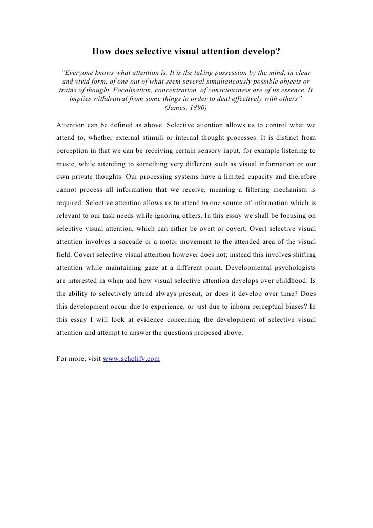 culture and ethnocentrism essay
