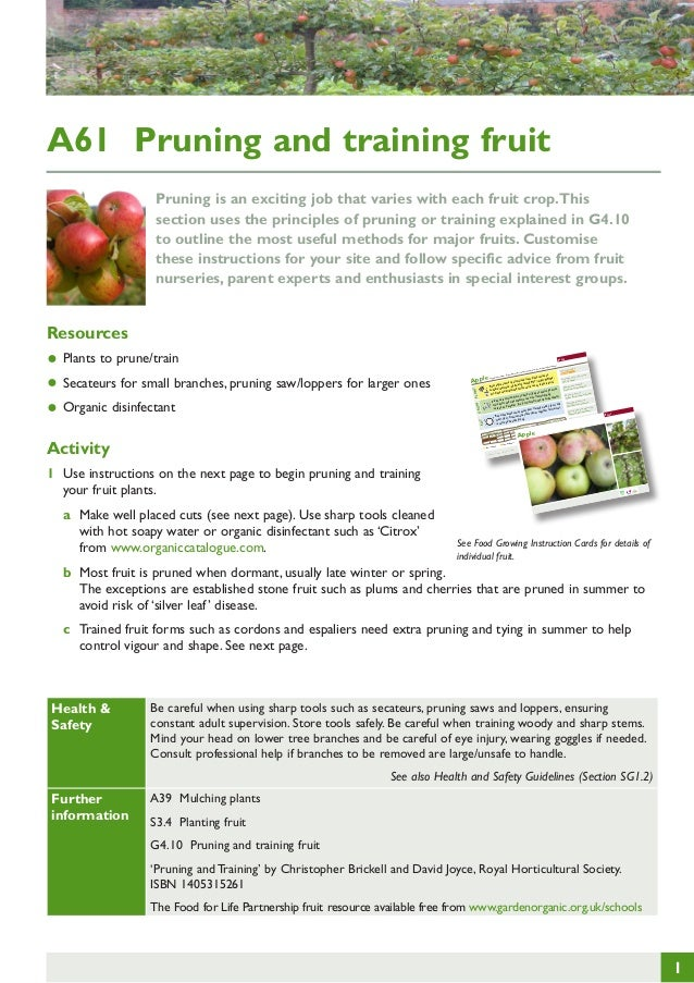 Pruning and Training Fruit ~ Teacher Guide, Organic Gardening