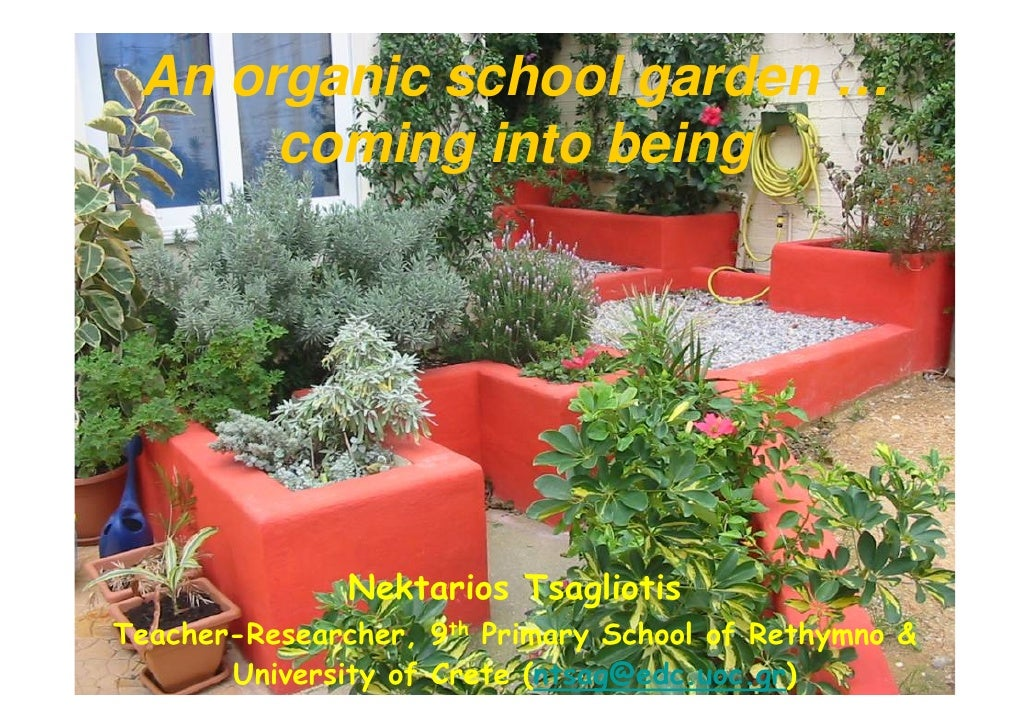 School garden development
