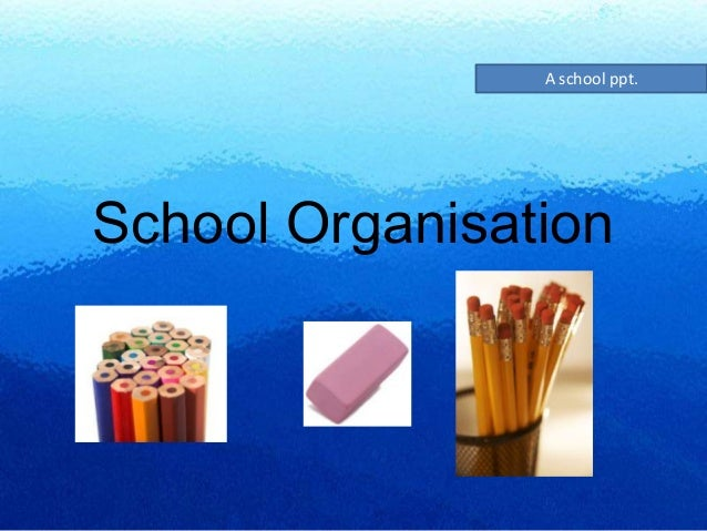 schools as organisastions To assume their roles in the organization  organizational culture,  schools are able to achieve success only when shared values exist among group.