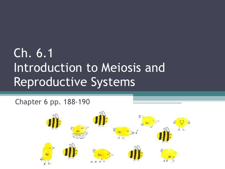 Ch. 6.1  Introduction to Meiosis and  Reproductive Systems Chapter 6 pp. 188-190