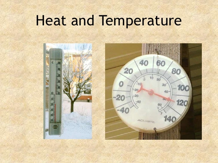 heat & temperature with the adaptation of animalas and plants