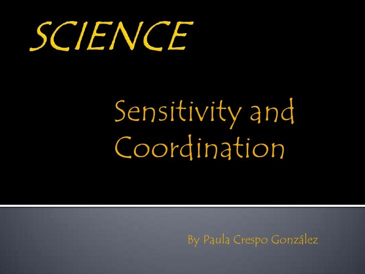Sensitivity andCoordination      By Paula Crespo González