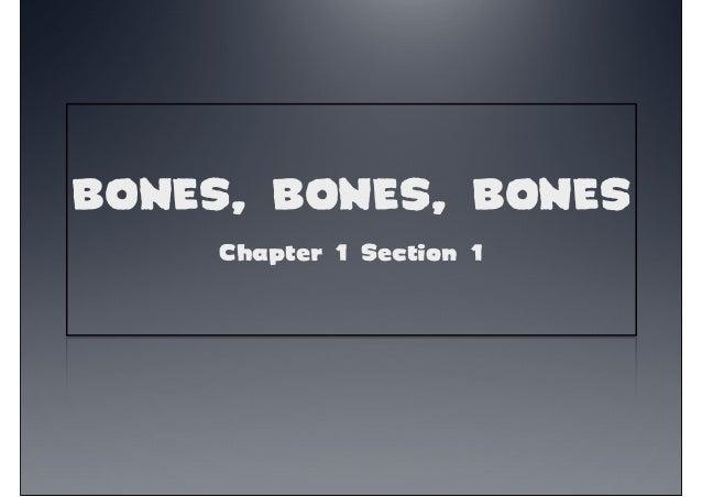 BONES, BONES, BONESChapter 1 Section 1