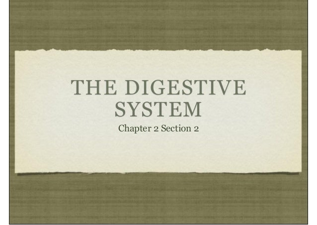 THE DIGESTIVESYSTEMChapter 2 Section 2