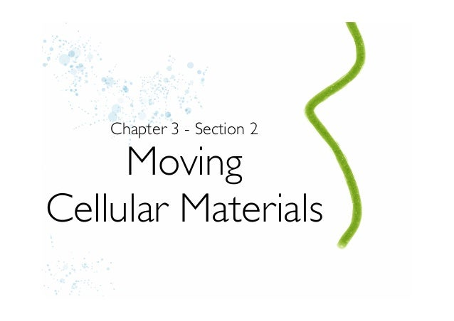 Chapter 3 - Section 2     MovingCellular Materials