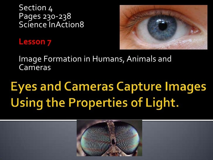 Section 4 Pages 230-238 Science InAction8 Lesson 7 Image Formation in Humans, Animals and Cameras