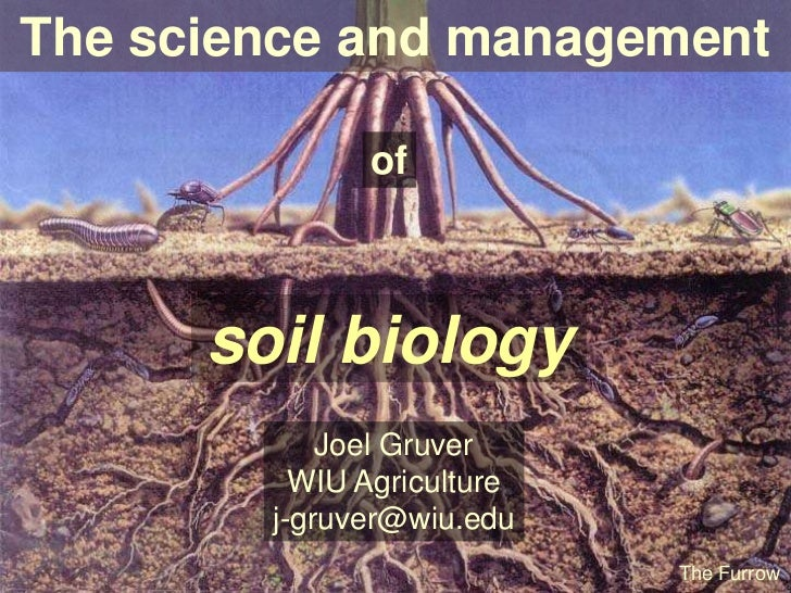 Science and management of soil biology for About soil science