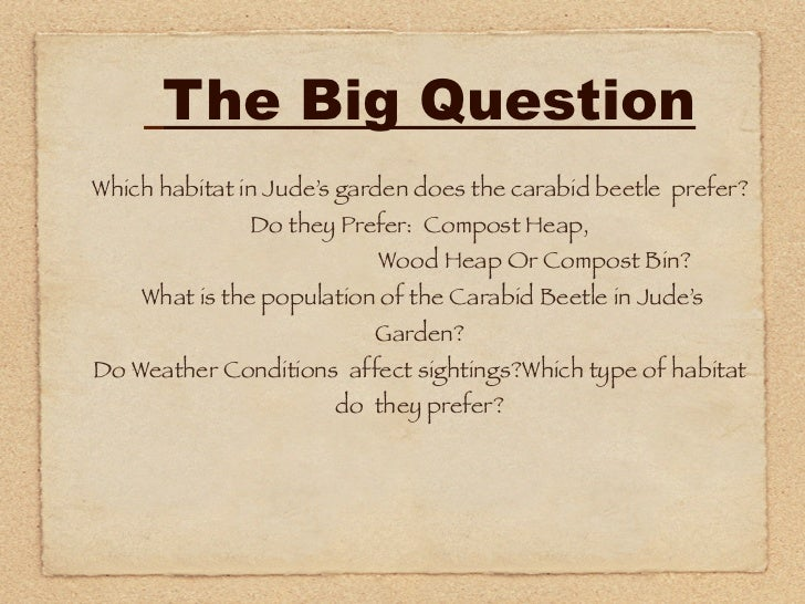 The Big QuestionWhich habitat in Jude's garden does the carabid beetle prefer?              Do they Prefer: Compost Heap, ...