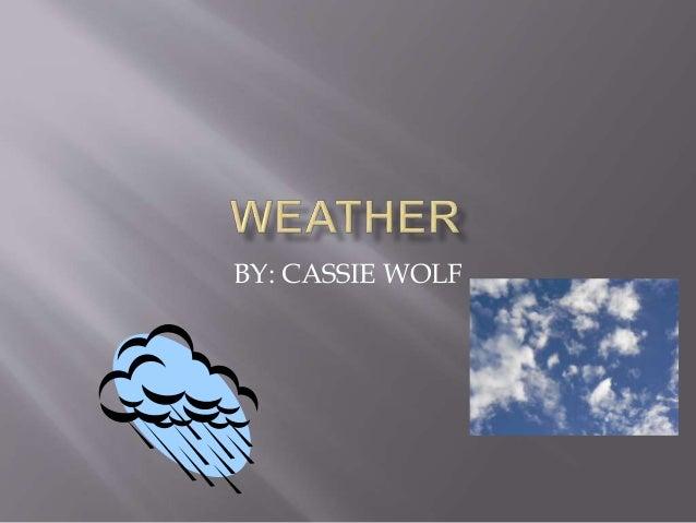 BY: CASSIE WOLF