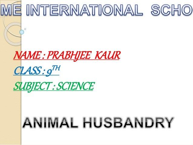 animal husbandry 1 Govt animal husbandry jobs 2018 - sarkari naukri latest job: national highways authority of india (nhai) invites application for 4 general manager recruitment 2018.