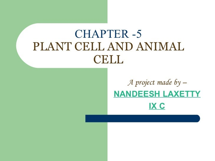 CHAPTER -5 PLANT CELL AND ANIMAL CELL A project made by – NANDEESH LAXETTY IX C