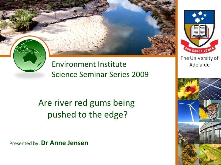 Environment Institute Science Seminar Series 2009 Are river red gums being  pushed to the edge? Presented by:  Dr Anne Jen...
