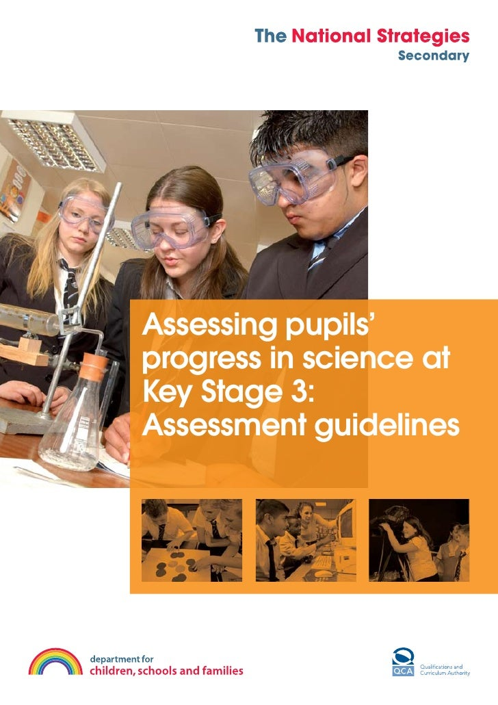 Assessing pupils' progress in science at Key Stage 3: Assessment guidelines