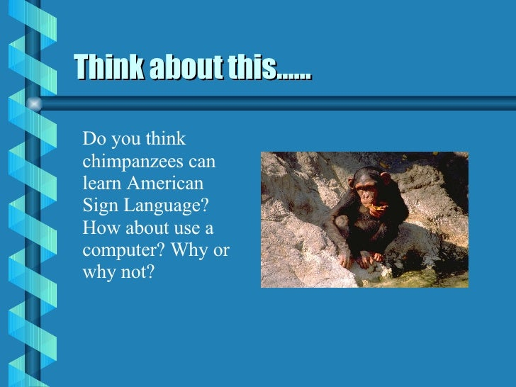 Think about this…… Do you think chimpanzees can learn American Sign Language? How about use a computer? Why or why not?