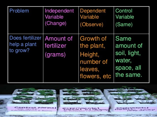 Problem Independent Variable (Change) Dependent Variable (Observe) Control Variable (Same) Does fertilizer help a plant to...
