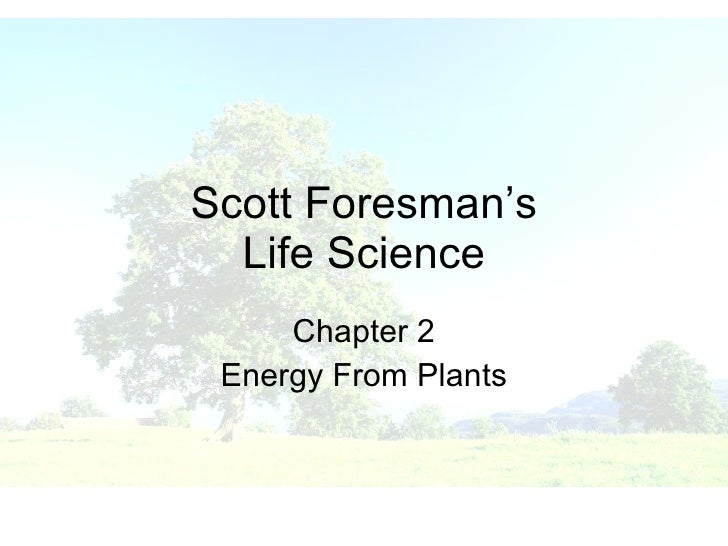 Scott Foresman Science: Grade 3 Activity Book