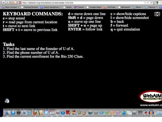 Screen reader simulation