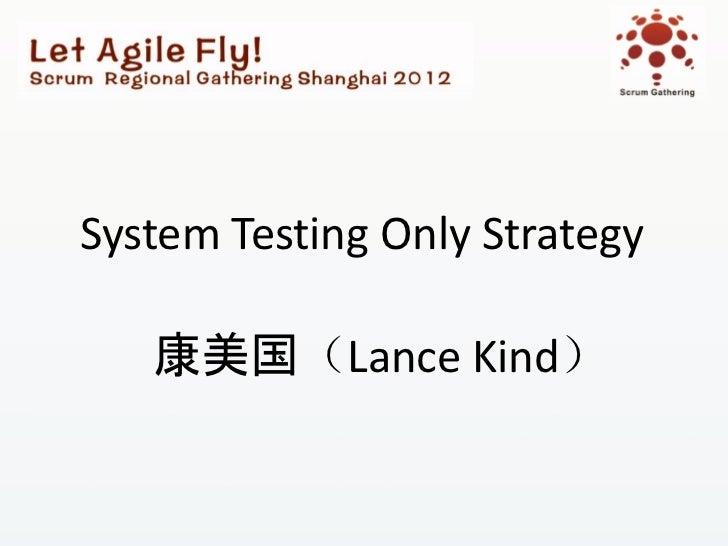 System Testing Only Strategy   康美国(Lance Kind)