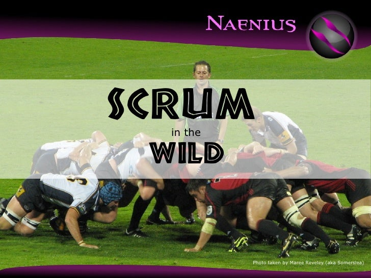 Scrum in the Wild - phpBenelux 2011
