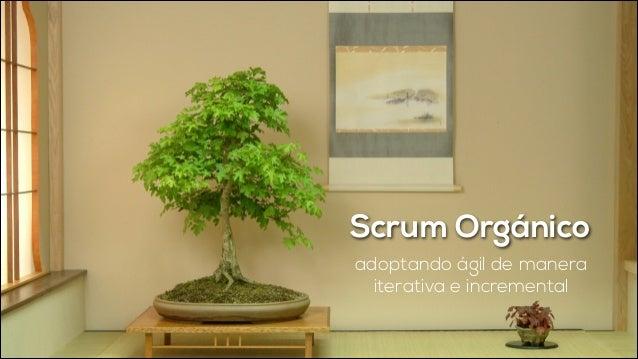 Scrum Orgánico adoptando ágil de manera iterativa e incremental