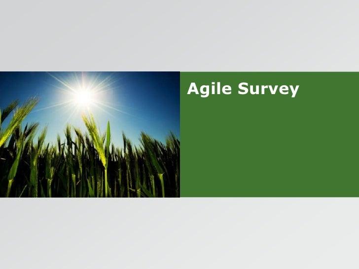 Agile Survey<br />