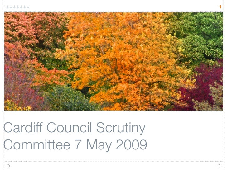 1     Cardiff Council Scrutiny Committee 7 May 2009