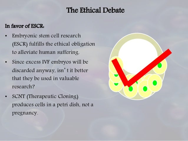 Stem cell debate research paper