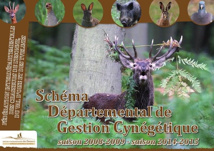 Schéma Départemental de Gestion Cynégétique                        tementale         de la FICEVY - 2009/2015            ...