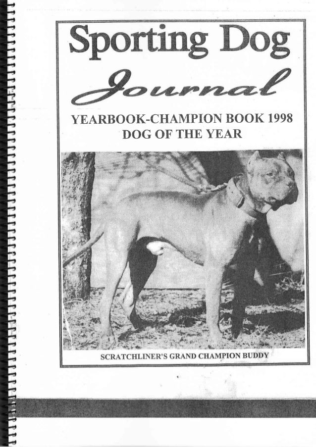YEARBOCIK.CIdAMPION BOOK 1998      T}OG OF THE YEAR
