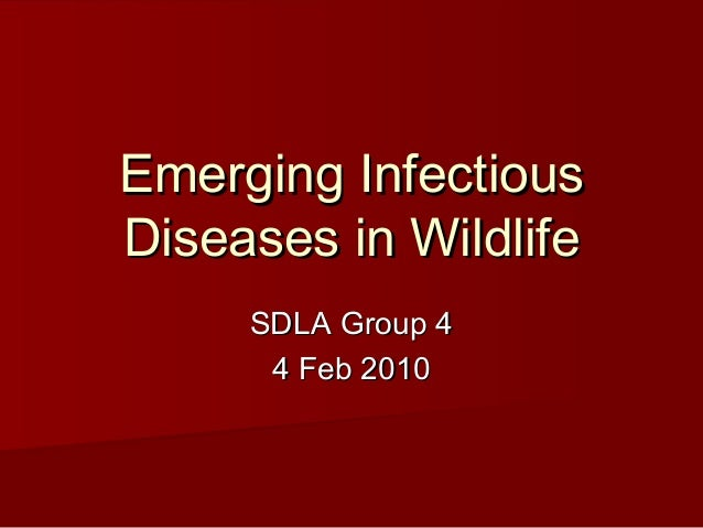 Emerging InfectiousDiseases in Wildlife     SDLA Group 4      4 Feb 2010