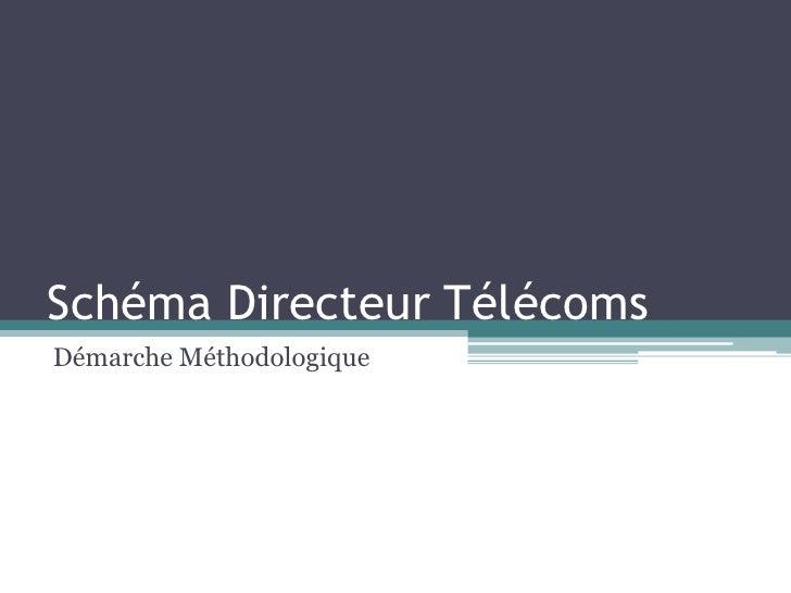 Schéma Directeur Télécoms<br />Démarche Méthodologique<br />