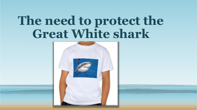 The need to protect the Great White shark