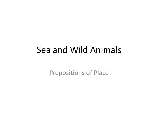 Sea and Wild Animals Prepositions of Place