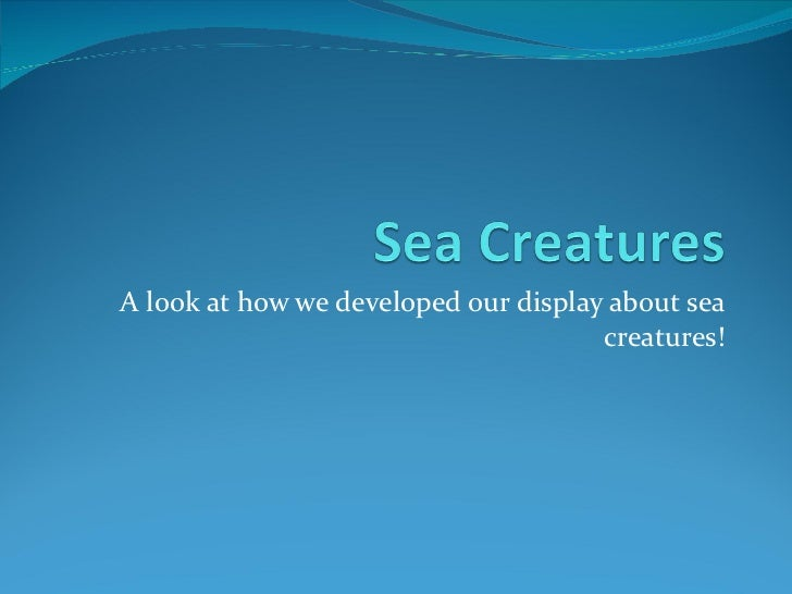 A look at how we developed our display about sea creatures!