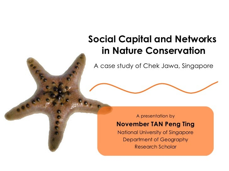 Social Capital and Networks  in Nature Conservation A case study of Chek Jawa, Singapore A presentation by November TAN Pe...